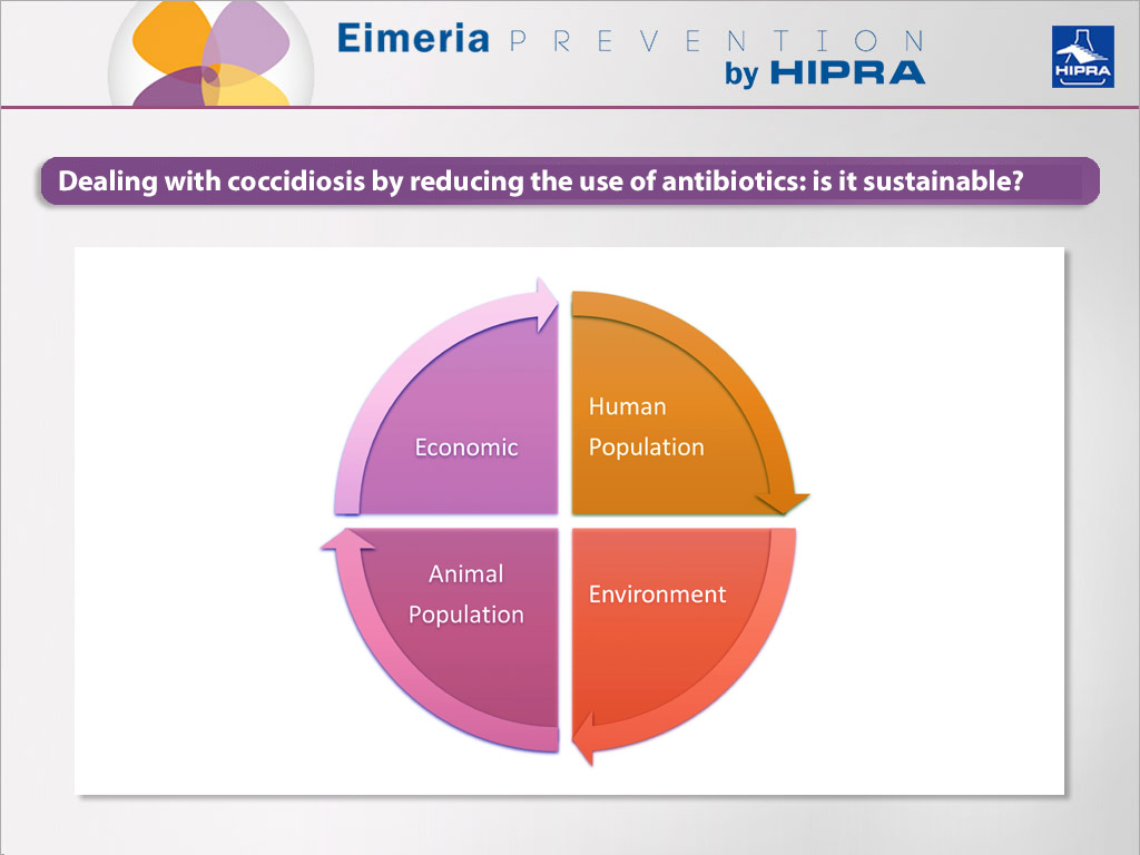 lifecycle of reducing antibiotics in poultry