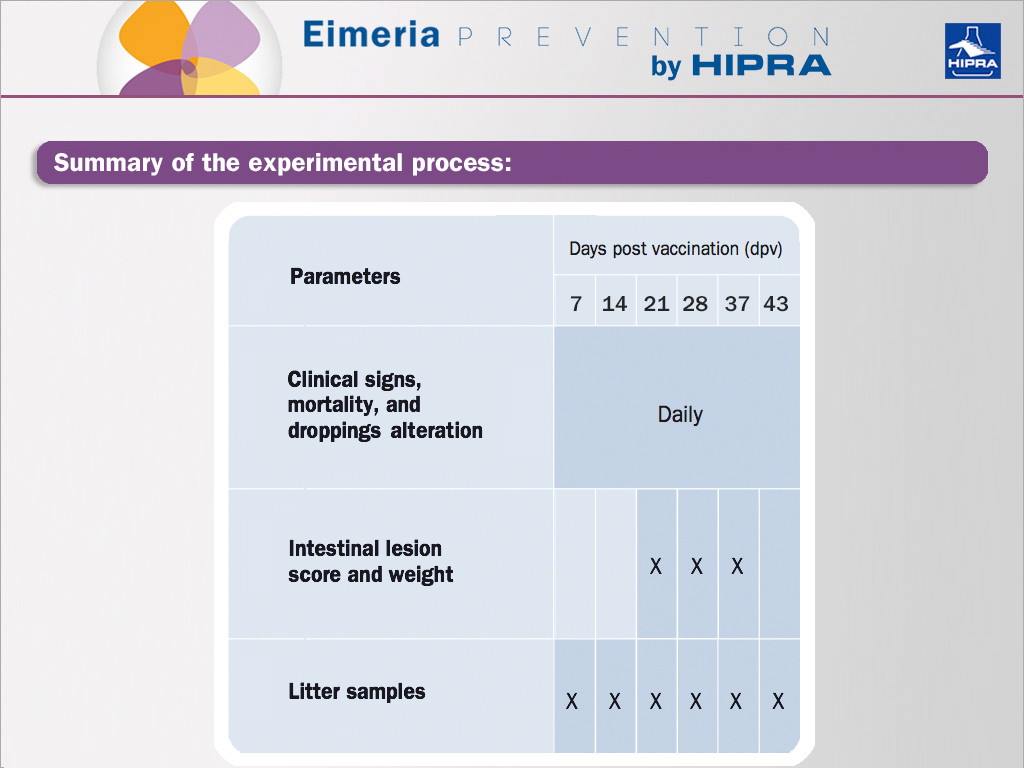 table statistic of non-attenuated and attenuated Eimeria vaccines