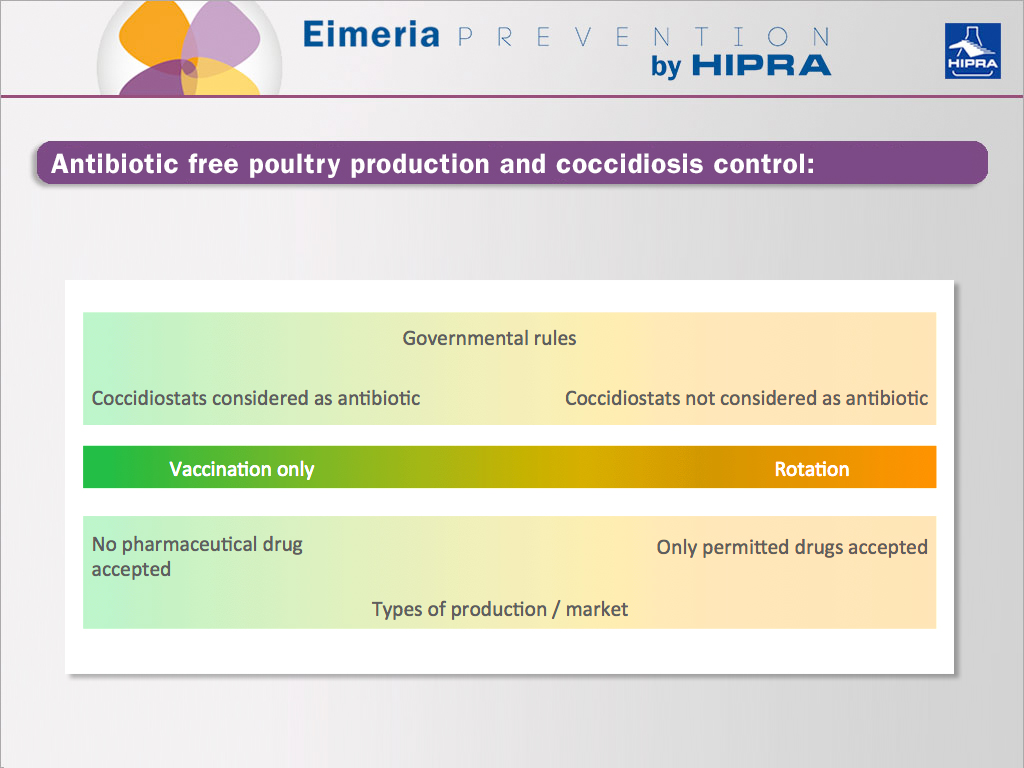 timetable designed of an antibiotic-free poultry production