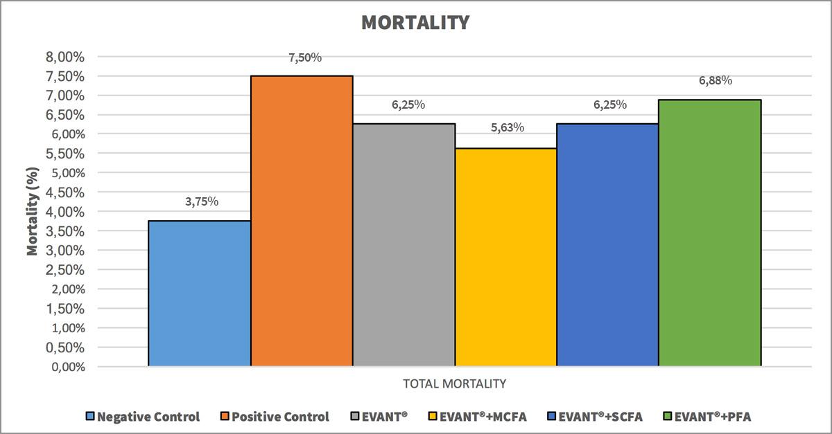 Coccidiosis in Chickens: Mortality