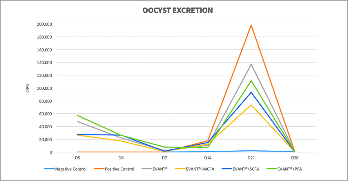 Coccidiosis in Chickens: Oocyst Excretion