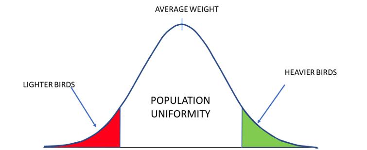 population uniformity: coccidiosis