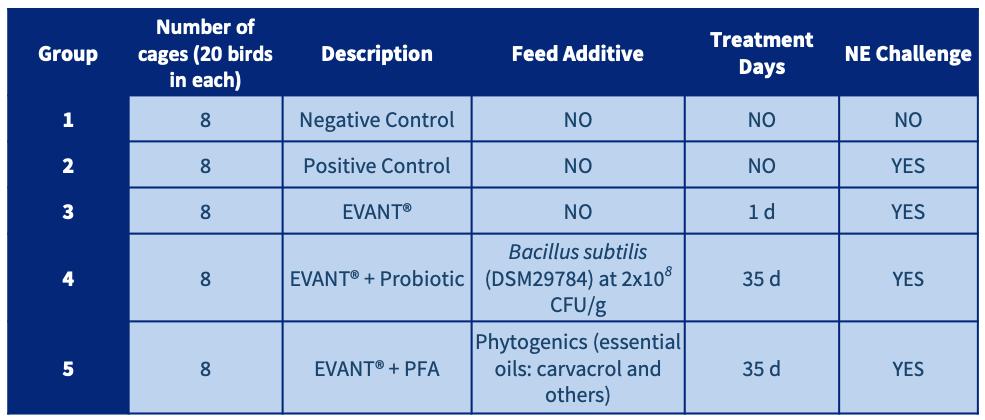 coccidiosis prevention