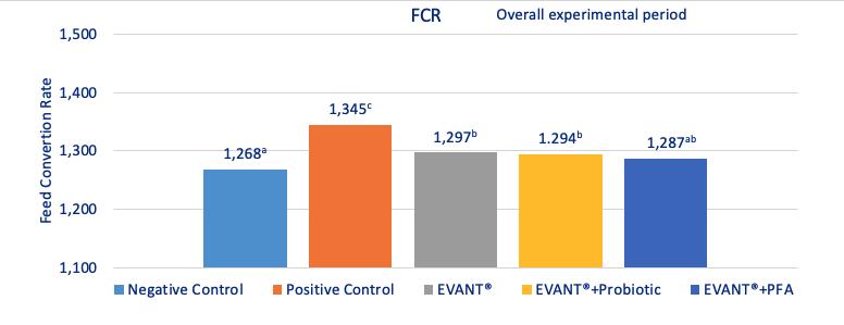 feed conversio ratio coccidiosis vaccines